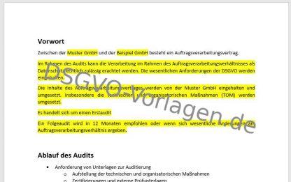 Vorwort für einen Auditbericht nach DSGVO für einen AV-Vertrag.